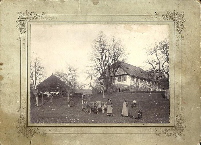 Bauernhof vulgo Tscheitschonig in Hohenfeld 1919