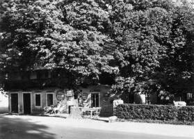Gasthof Koch mit Linde 1940er Jahre