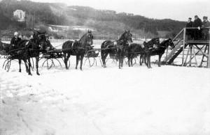 Pferderennen 1920er Jahre