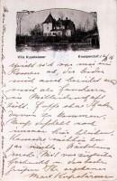 Villa Kuppelwieser 1916