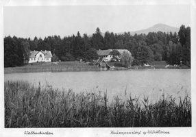 Gut Walterskirchen 1961